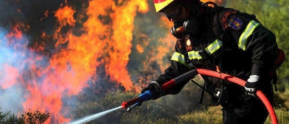 Νέα πυρκαγιά ξέσπασε στη Φυλή