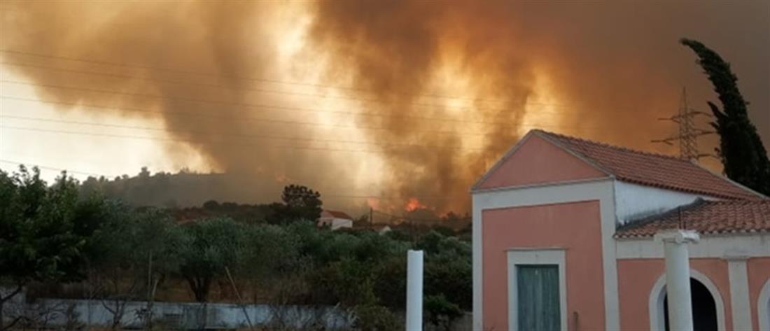 Φωτιά στη Ρόδο: Άρχισε η καταγραφή των ζημιών - Τι πρέπει να κάνουν οι πληγέντες