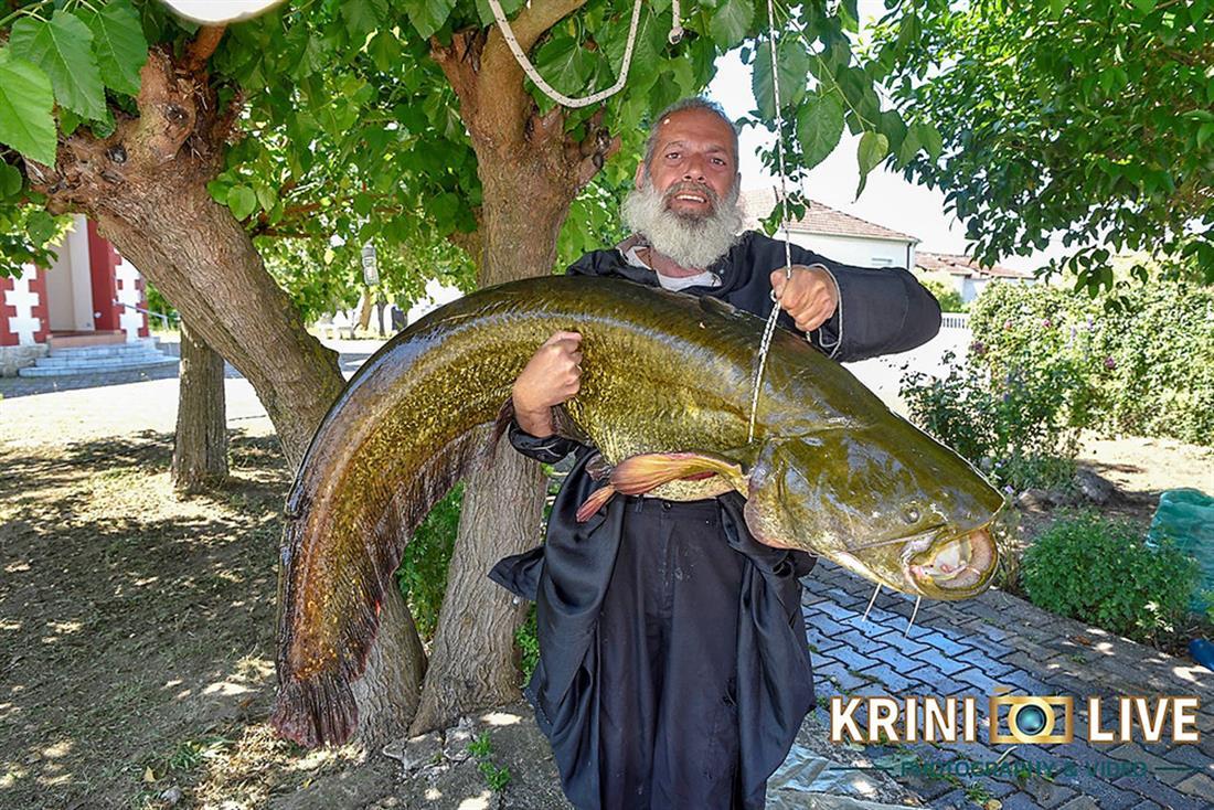 Ψάρι - 35 κιλά - Πηνειός ποταμός - Τρίκαλα