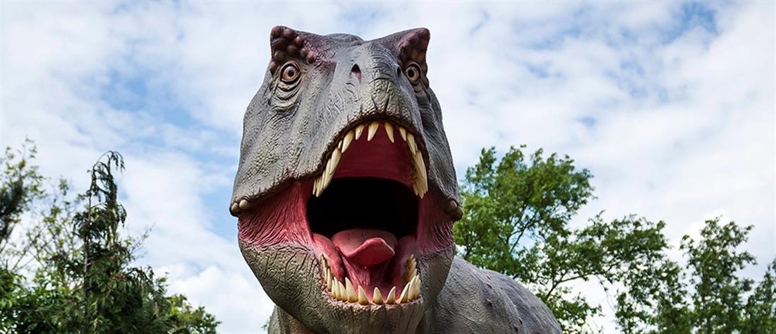 Ανακαλύφθηκε πρόγονος-μινιατούρα του Τυραννόσαυρου Ρεξ (εικόνα)