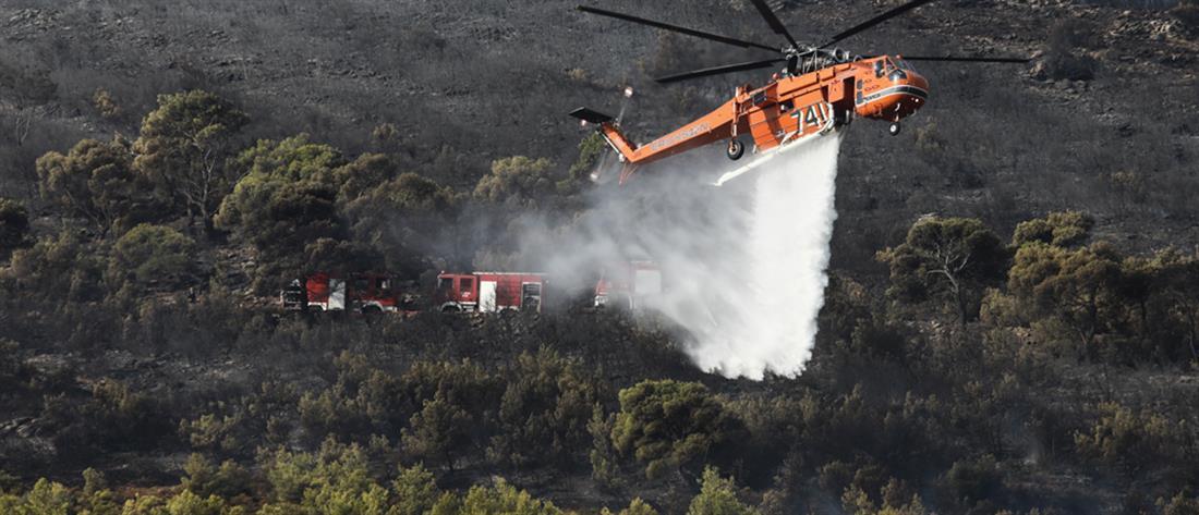"""Φωτιές: Πέντε Περιφέρειες στο """"κόκκινο"""" την Τετάρτη"""