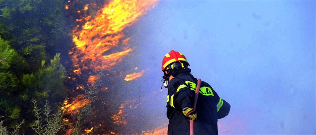 Ποιες περιοχές κινδυνεύουν με φωτιές την Δευτέρα (χάρτης)