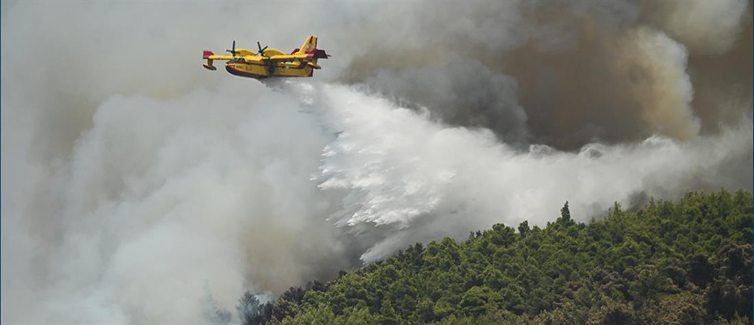Φωτιά στην Βαρυμπόμπη: Μεγάλη αναζωπύρωση