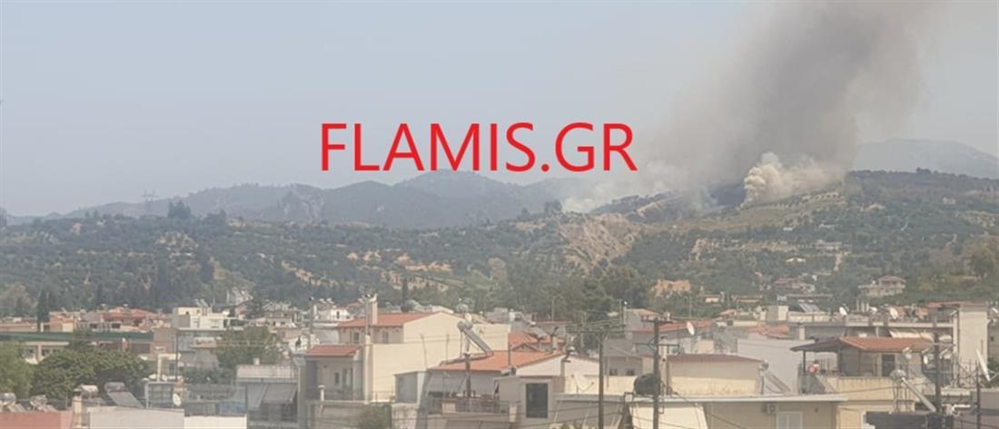 Φωτιά στην Πάτρα και εκκένωση του Προφήτη Ηλία (εικόνες)