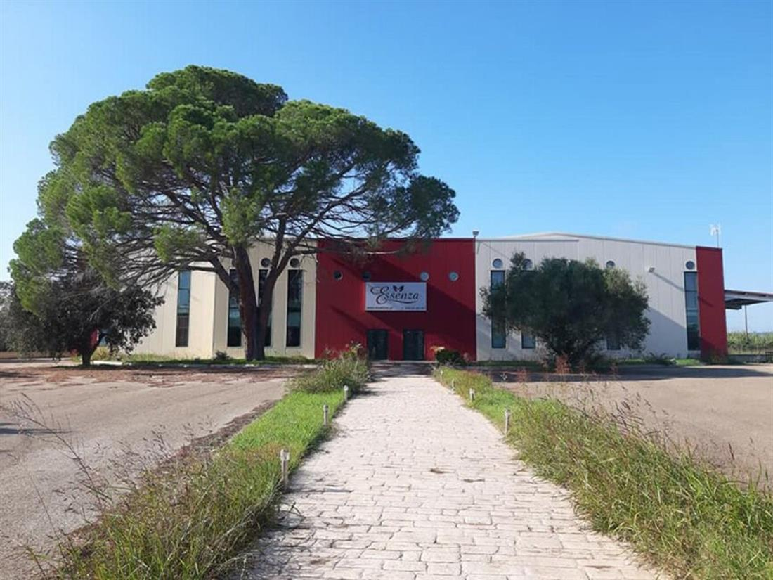 Εργοστάσιο Μπράτη - Διαρρήκτες