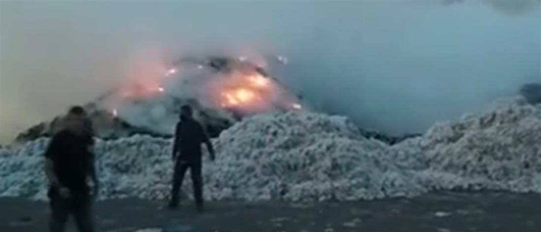 Φωτιά σε εκκοκιστήριο βάμβακος στην Καρδίτσα (εικόνες)