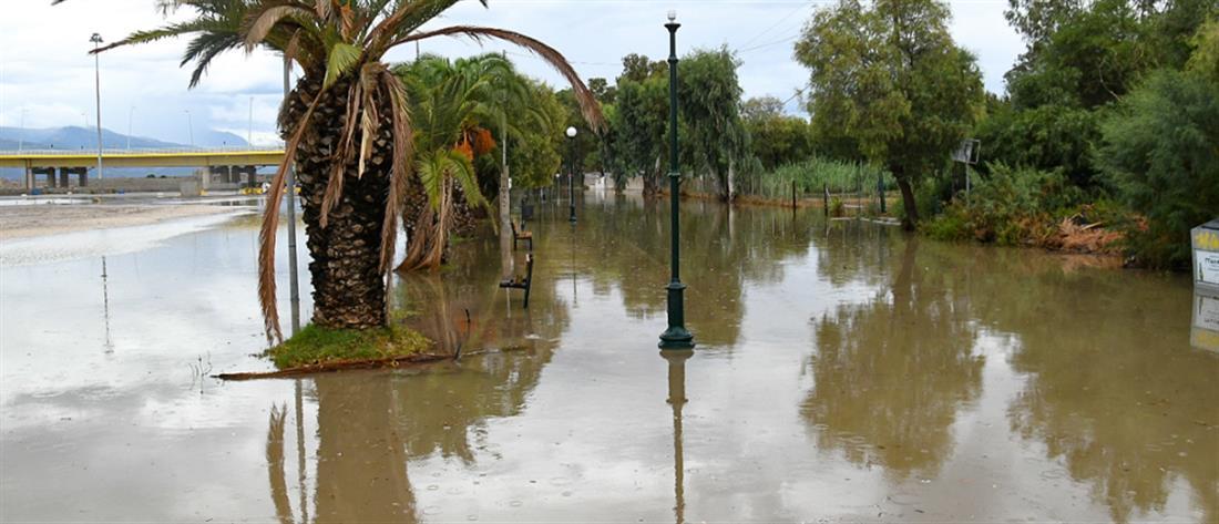 """""""Ιανός"""" - ΔΕΔΔΗΕ: """"Μάχη"""" για την αποκατάσταση της ηλεκτροδότησης στις πληγείσες περιοχές"""