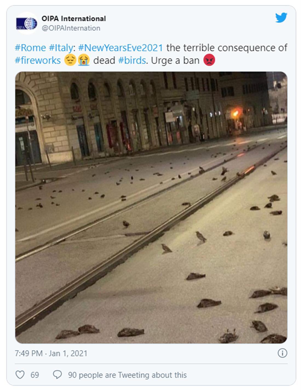 Ιταλία - νεκρά πουλιά