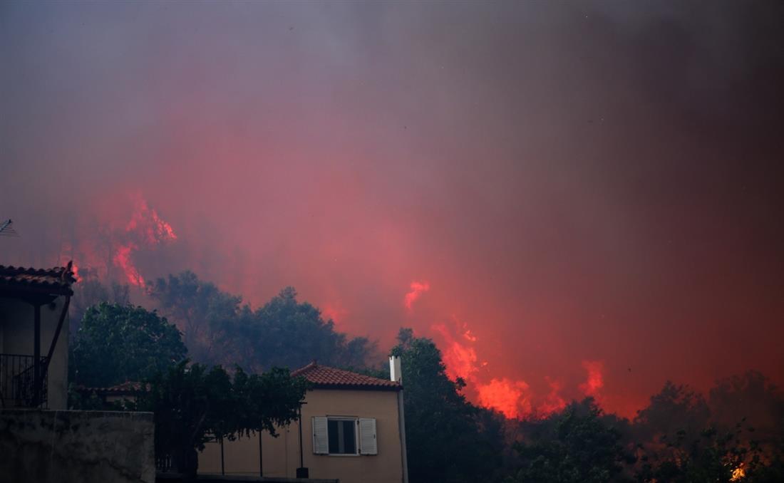 Εύβοια - Φωτιά - Πυρκαγιά