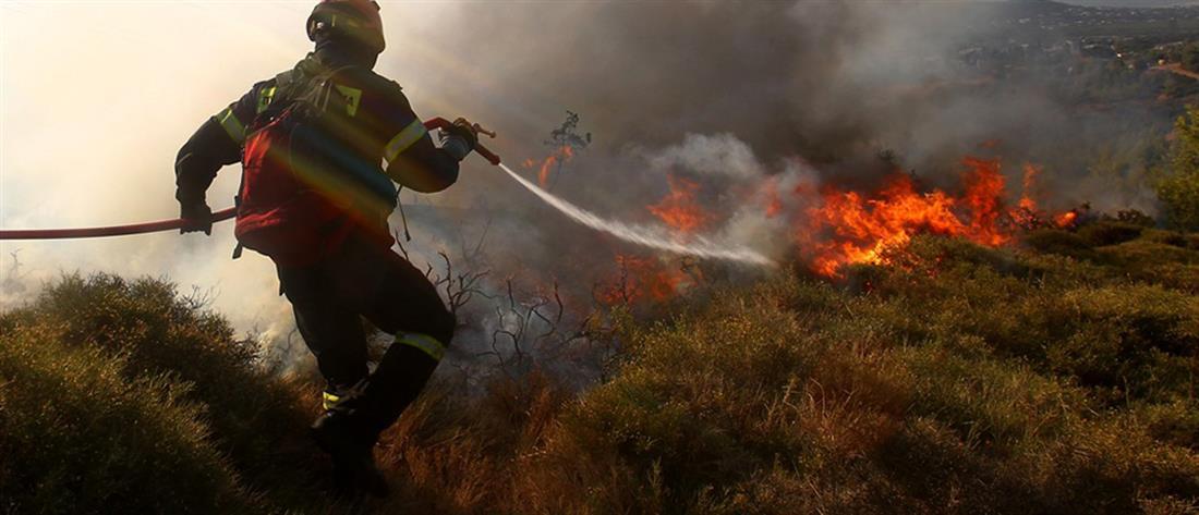 ΓΓΠΠ: Σε ποιες περιοχές υπάρχει πολύ υψηλός κίνδυνος πυρκαγιάς