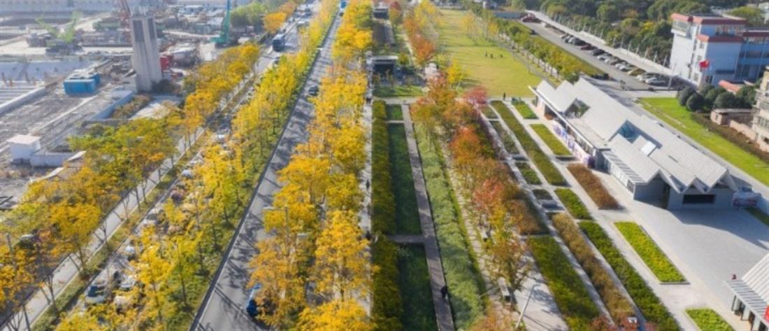 Διάδρομος αεροδρομίου έγινε πάρκο αναψυχής!