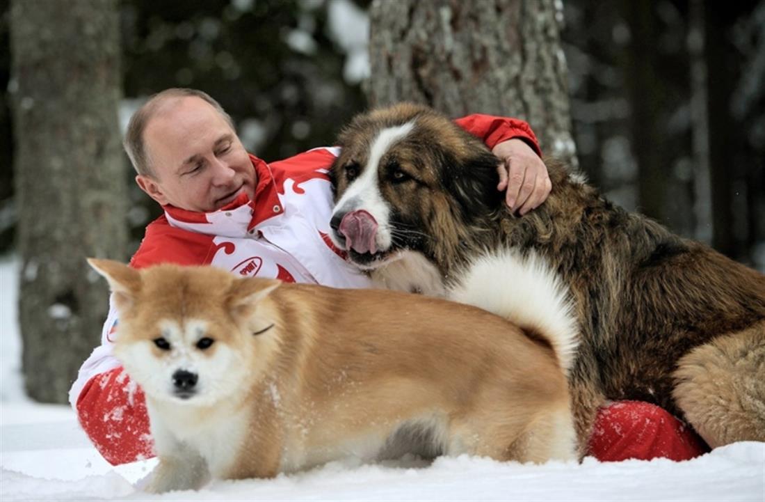 κατοικίδια ηγετών - σκυλιά