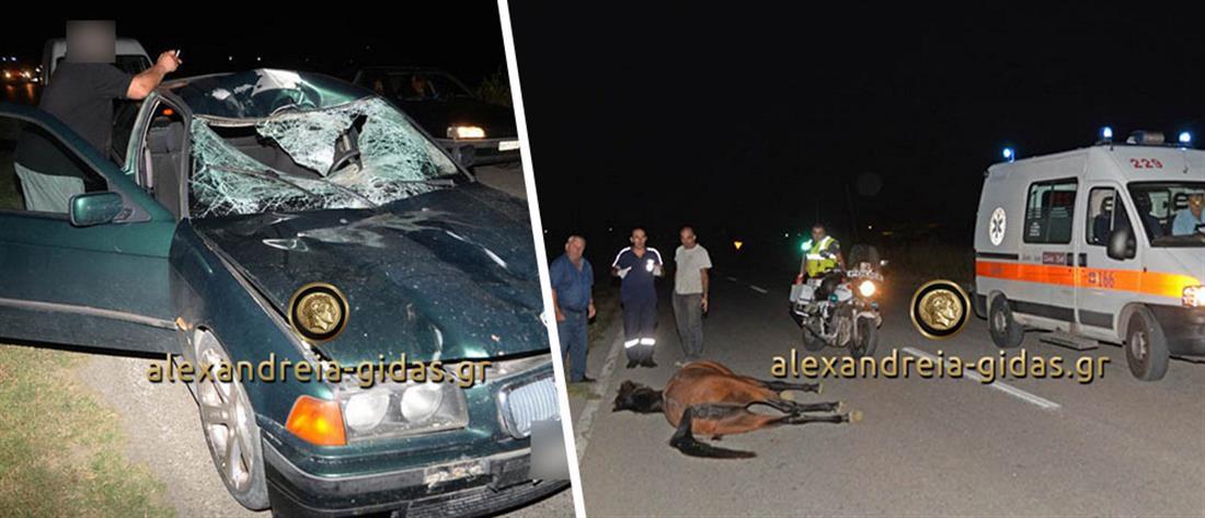 Σοβαρό τροχαίο: Μετωπική σύγκρουση αυτοκινήτου με άλογο (Σκληρές εικόνες)