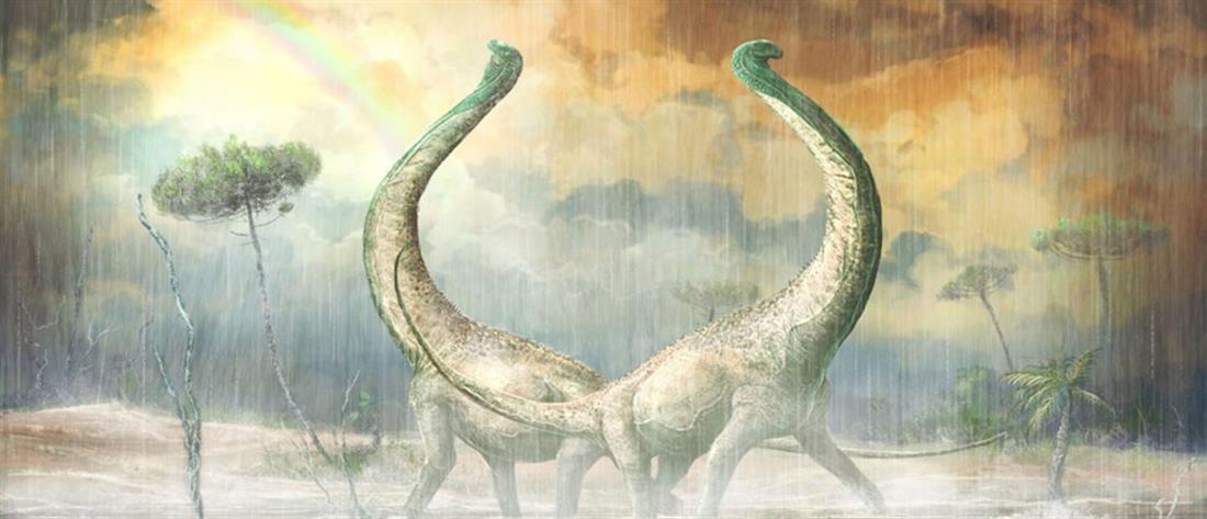 """Σπουδαία ανακάλυψη: Στο """"φως"""" καλά διατηρημένο απολίθωμα ενός Τιτανόσαυρου (βίντεο)"""