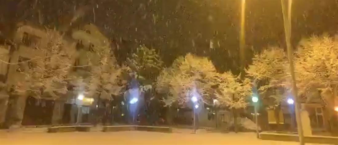 """Στα λευκά """"ξύπνησε"""" η Φλώρινα (βίντεο)"""
