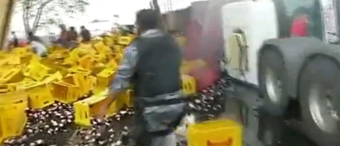 Τροχαίο με θύματα… καφάσια μπίρας (βίντεο)