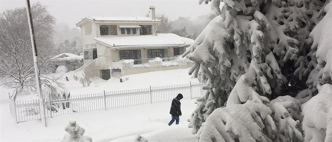 Επιμένουν χιονιάς και παγετός, παραμένουν τα προβλήματα (βίντεο)