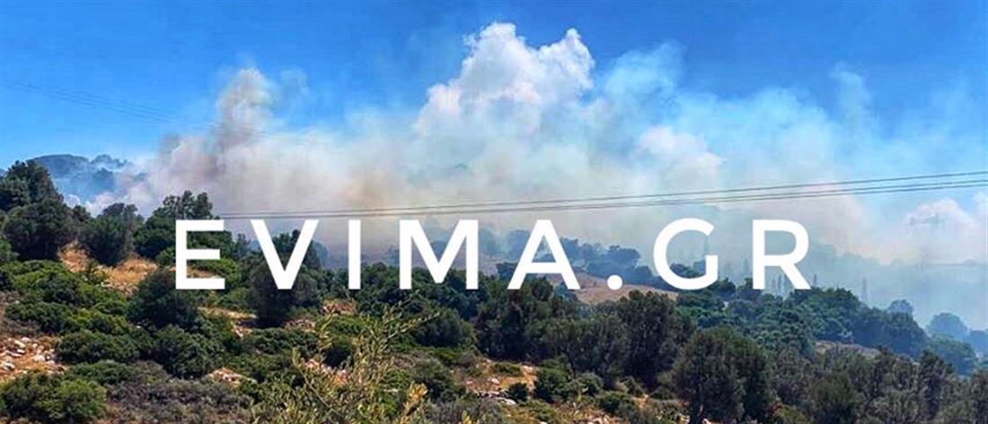 Μεγάλη φωτιά στην Εύβοια (εικόνες)