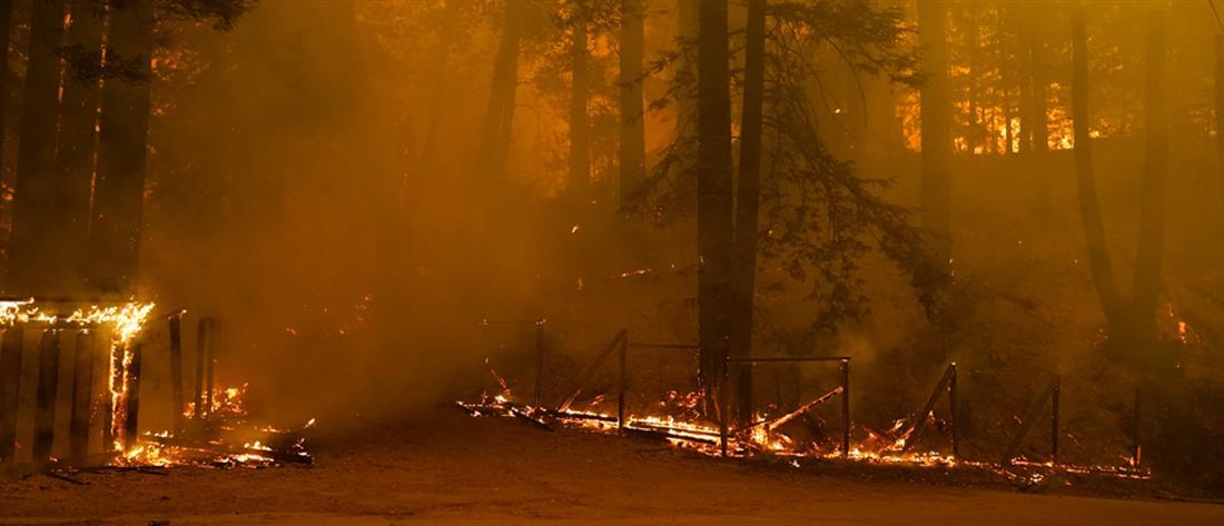 Καλιφόρνια: στον κλοιό πυρκαγιών, καύσωνα και κορονοϊού