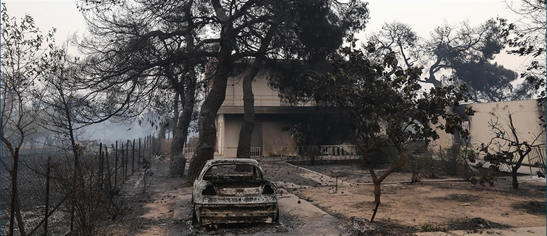 Φωτιά στη Βαρυμπόμπη: καμένα σπίτια, καμένα ζώα και καταστροφή (εικόνες)