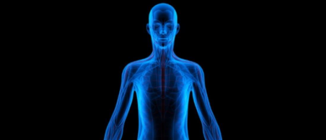 Ανακαλύφθηκε άγνωστο όργανο στο ανθρώπινο σώμα