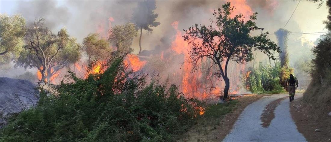 Φωτιές: συναγερμός σε Αττική και Εύβοια και τη Δευτέρα