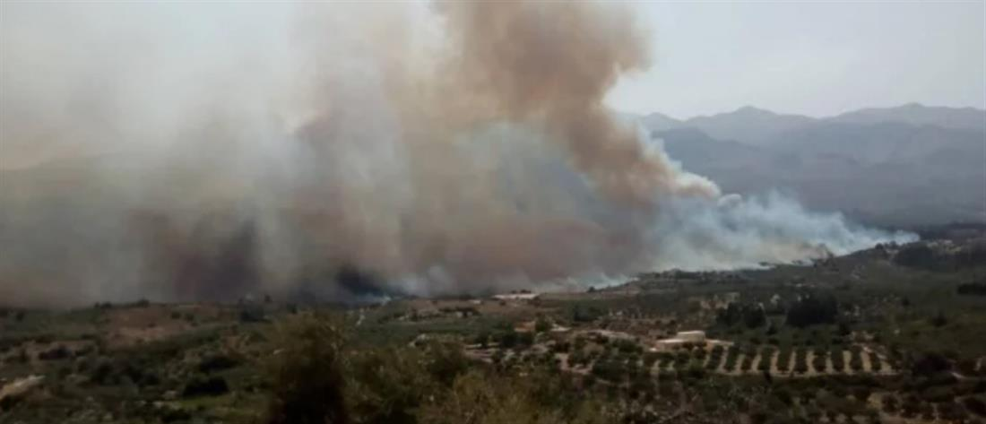 Πυρκαγιά στα Χανιά (εικόνες)