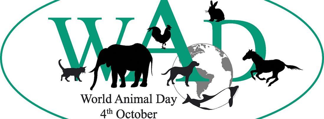 Παγκόσμια Ημέρα των Ζώων: η σχέση μας με τα ζώα υπόθεση ηθικής