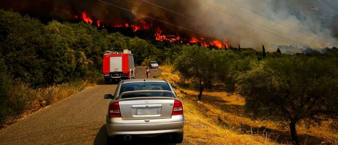 Μεγάλη φωτιά στην Φωκίδα