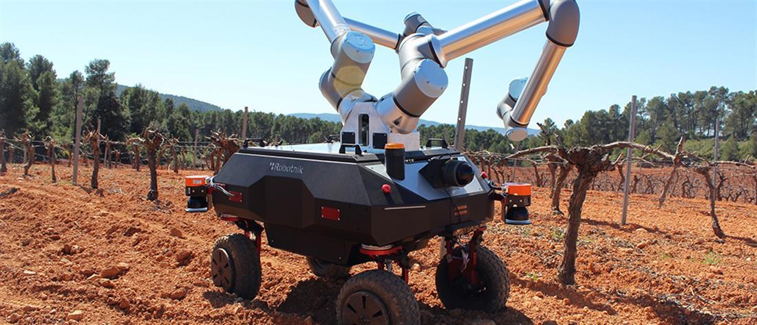 ΑΠΘ - BACCHUS: Ένα ρομπότ στον αμπελώνα (εικόνες)