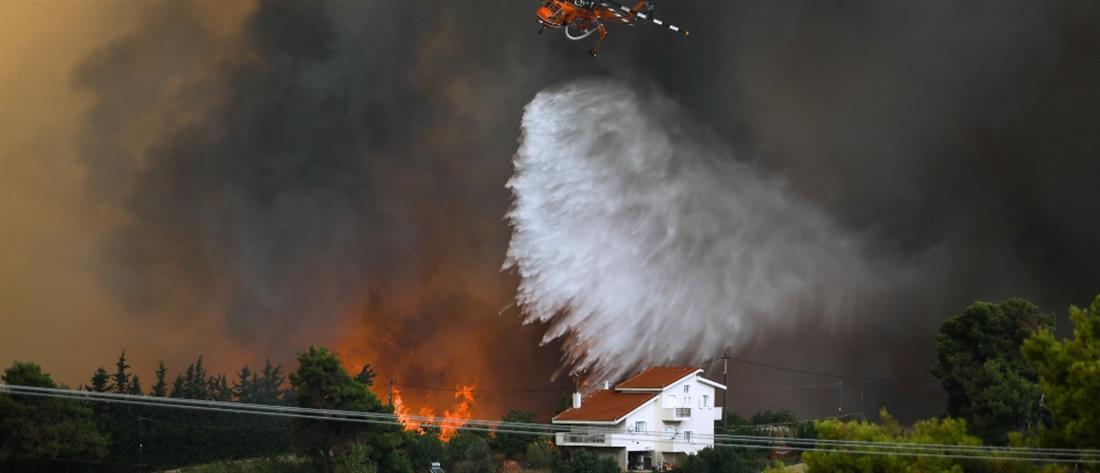 Φωτιές: μπαράζ συλλήψεων για εμπρησμό