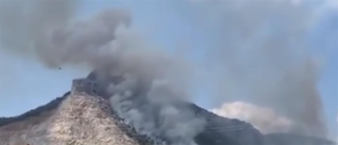 Πυρκαγιά σε δασική έκταση στις Κεχριές (εικόνες)