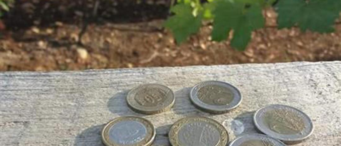 Μετανάστες άφησαν χρήματα για σταφύλια που έφαγαν από αμπελώνα (εικόνες)