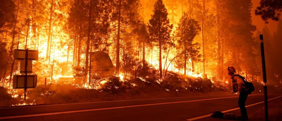 """""""Μαύρο ρεκόρ"""" δεκαετιών από τις φωτιές στην Καλιφόρνια"""