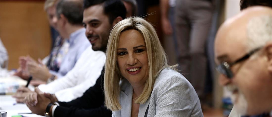 Γεννηματά: Ώρα να μπει φραγμός στην τουρκική επιθετικότητα