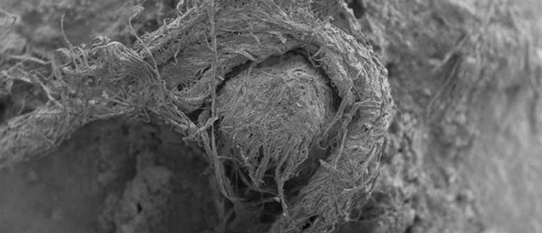 Ανακαλύφθηκε κομμάτι σχοινιού που το είχαν φτιάξει... Νεάντερταλ! (εικόνες)