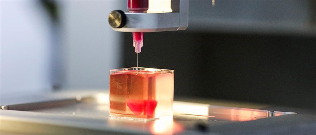 Επιστήμονες εκτύπωσαν καρδιά με αγγεία από ανθρώπινους ιστούς (βίντεο)