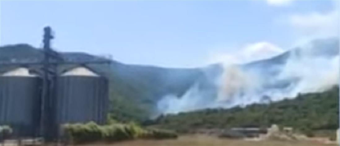 Καβάλα: Φωτιά στους Αντιφιλίππους (εικόνες)