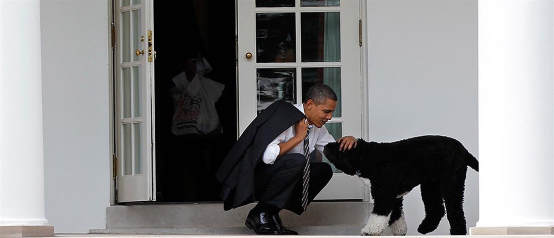 Μπαράκ Ομπάμα: πέθανε ο σκύλος του, Μπο
