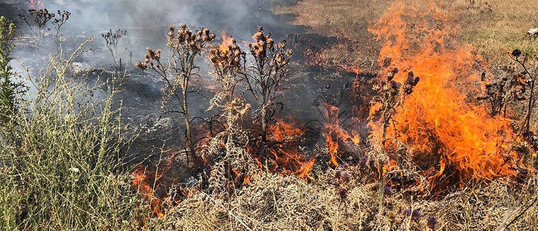 Φωτιές - ΓΓΠΠ: Πολύ υψηλός κίνδυνος την Κυριακή (χάρτης)