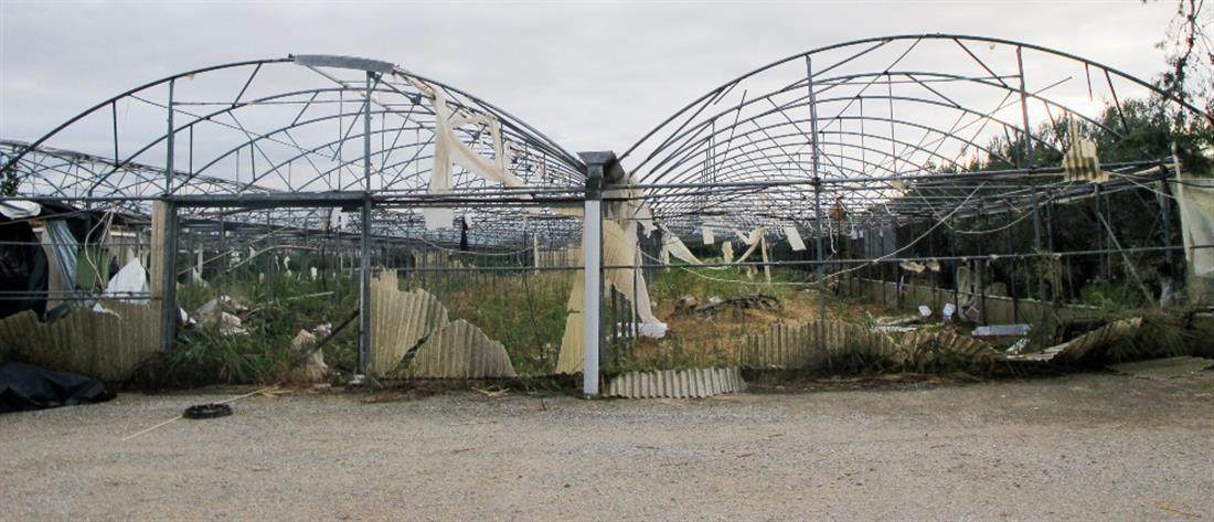 ΕΛΓΑ: μεγάλες οι ζημιές στην παραγωγή από την κακοκαιρία (πίνακας)