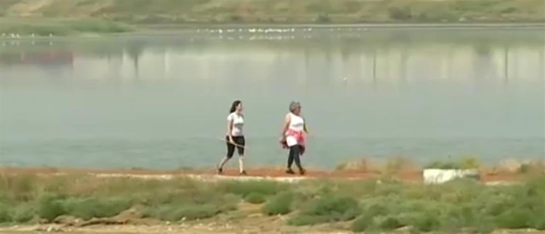 Συνελήφθη επίδοξος βιαστής στο Καλοχώρι (βίντεο)