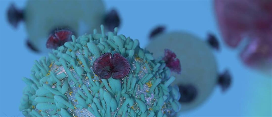 Ανοσοθεραπεία: Ο νέος πυλώνας στη θεραπεία του καρκίνου