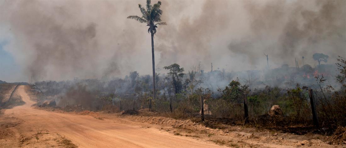 Βραζιλία: Επίσημη πρόταση στον Λεονάρντο ντι Κάπριο να δει τον Αμαζόνιο