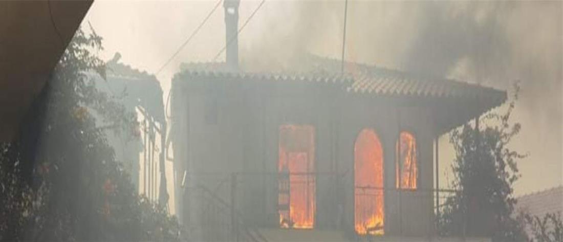 Φωτιά στην Ολυμπία: Καίγονται σπίτια, εκκενώθηκαν οικισμοί (εικόνες)