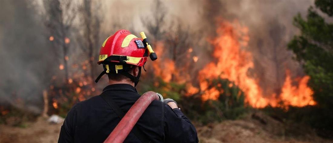 Μαίνεται η πυρκαγιά στον Κιθαιρώνα