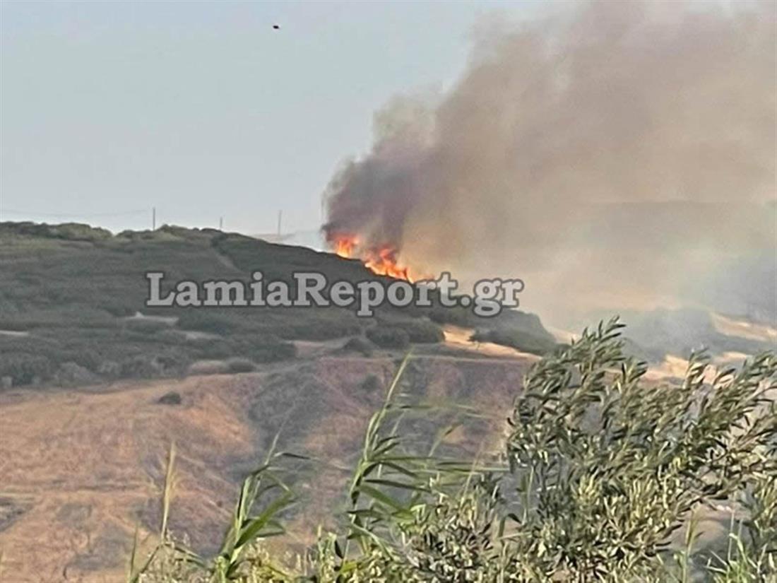 Λαμία - Καλύβια - πυρκαγιά