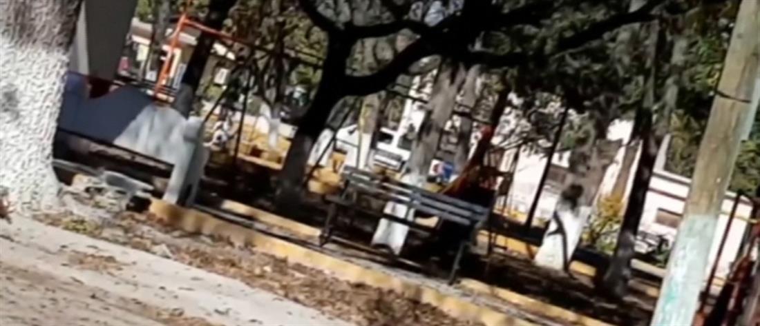 Βίντεο ντοκουμέντο από το μακελειό με τα καρτέλ στο Μεξικό