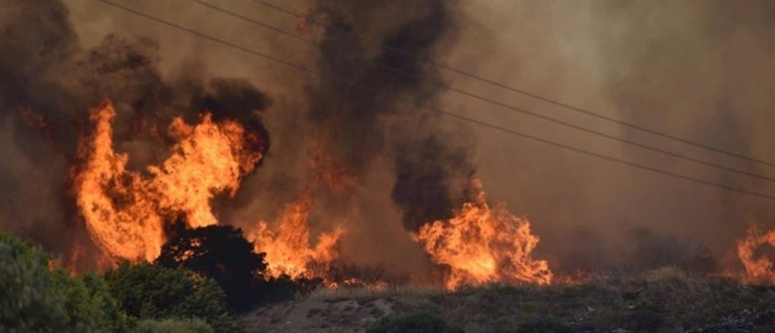 Φωτιά στην Πάρο: Διάσπαρτες εστίες - Ενισχύθηκαν οι δυνάμεις της Πυροσβεστικής (βίντεο)