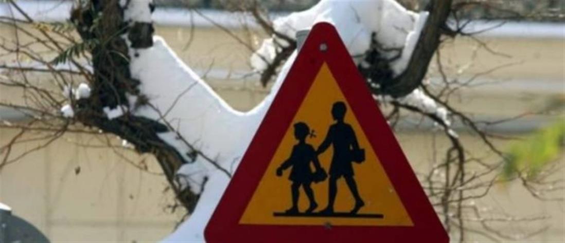 Επέλαση του χιονιά με… άγριες διαθέσεις